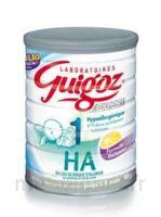 GUIGOZ EXPERT HA 1, bt 900 g à Mérignac